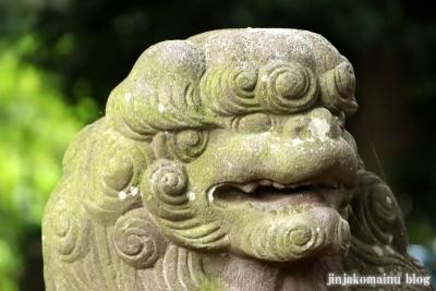 國分日枝神社(市川市国分)21