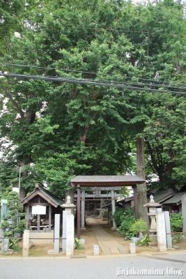 國分日枝神社(市川市国分)1