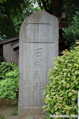 國分日枝神社(市川市国分)2