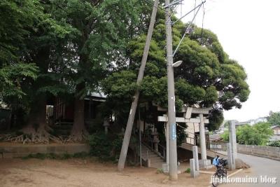 春日神社(市川市下貝塚)1