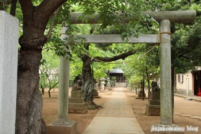 白幡神社(市川市宮久保)5