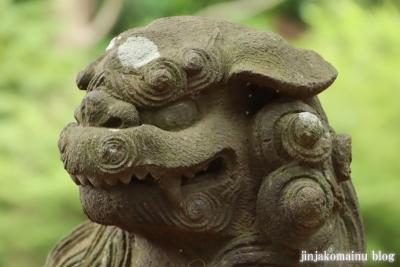 白幡神社(市川市宮久保)17