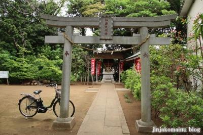 白幡神社(市川市宮久保)36