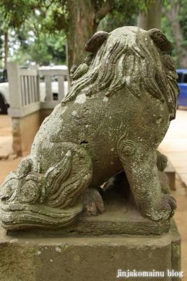 白幡神社(市川市宮久保)9