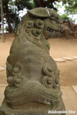 白幡神社(市川市宮久保)14