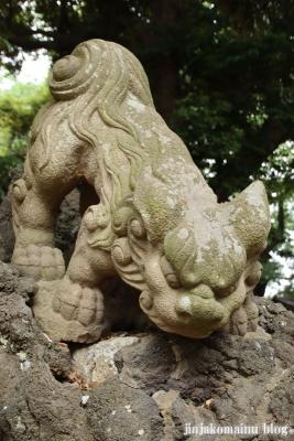 白幡神社(市川市宮久保)29