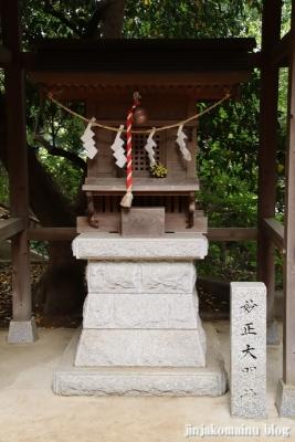 白幡神社(市川市宮久保)43