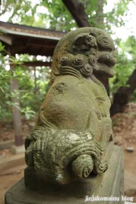 白幡神社(市川市宮久保)50