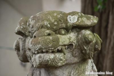 安房神社(市川市中山)21
