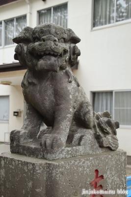 安房神社(市川市中山)13