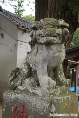 安房神社(市川市中山)17