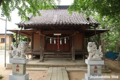 高石神社(市川市高石神)5