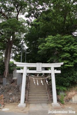 高石神社(市川市高石神)1