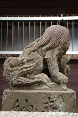 高石神社(市川市高石神)14