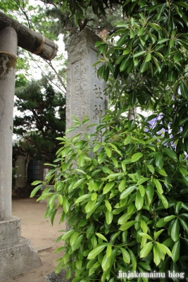 神明社(市川市鬼越)4