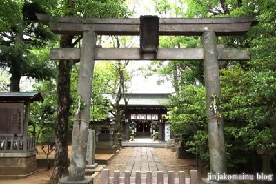 白幡天神社(市川市菅野)2