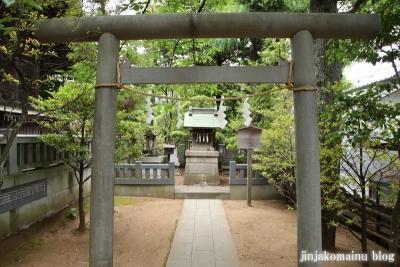 白幡天神社(市川市菅野)11