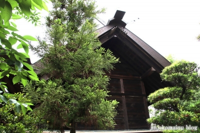 白幡天神社(市川市菅野)14