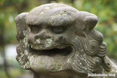 白幡天神社(市川市菅野)24