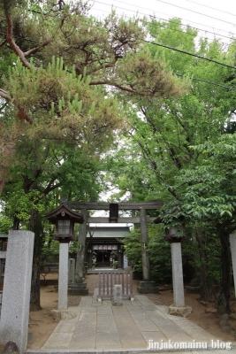 白幡天神社(市川市菅野)1
