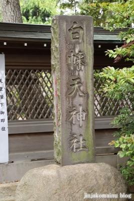 白幡天神社(市川市菅野)6