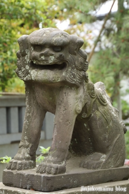 白幡天神社(市川市菅野)17