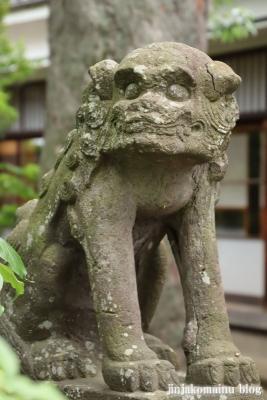 白幡天神社(市川市菅野)21