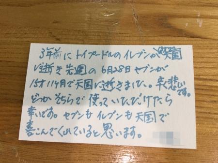 S__18006036.jpg