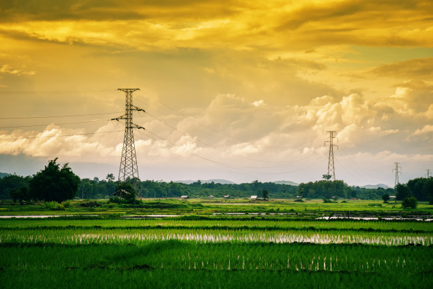 landscape-green-rice-field-with-electric-pole-high-voltage-sunset_73523-1286.jpg