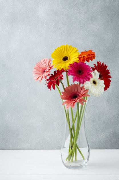 long-shot-minimalist-vase-with-gerbera-flowers_23-2148268327.jpg