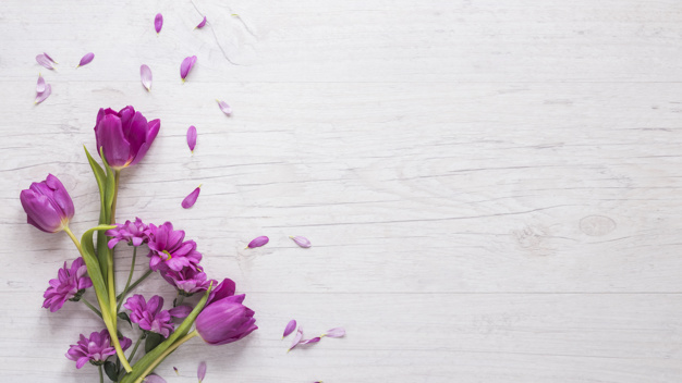 purple-flowers-with-petals-table_23-2148067797.jpg