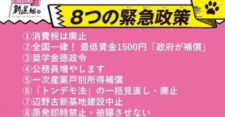 ReiwaShinsenumi_Seisaku.jpg