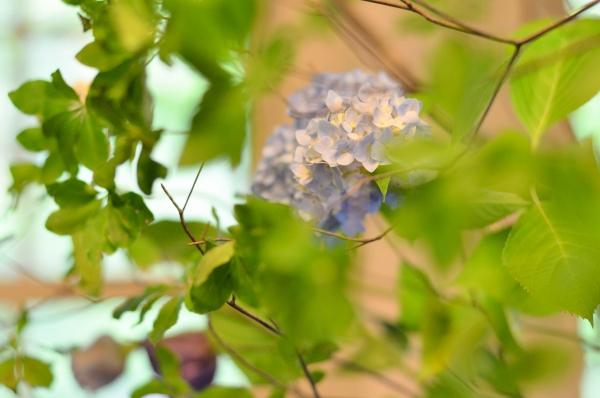 234 花と器17