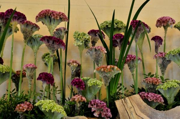 ベーリック 花と器6