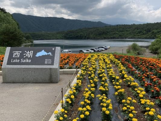 富士五湖1