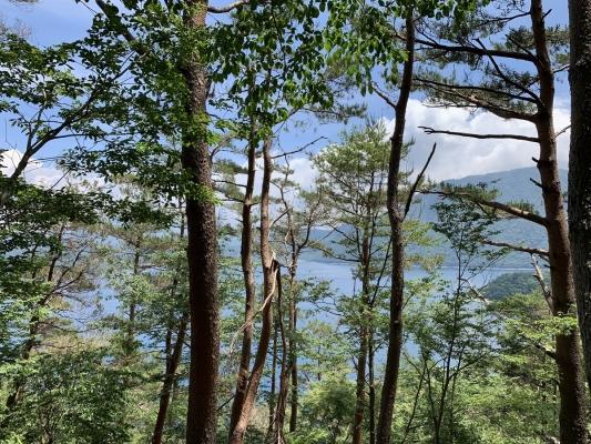 富士五湖9