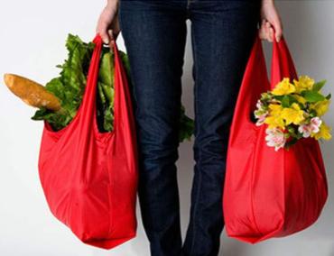 TTLOVEの持ち運びが楽な買い物袋の持ち方例