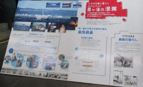 大洗水族館 霞ヶ浦の漁業