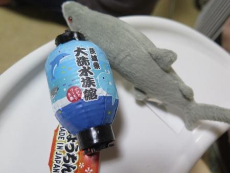 サメと提灯