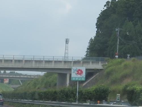 北関東自動車道 サザンカ