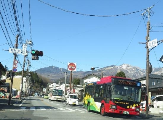 日光市 バス