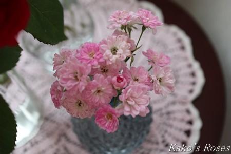 s-IMG_3989kako.jpg