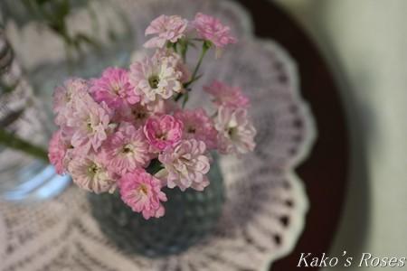 s-IMG_4003kako.jpg