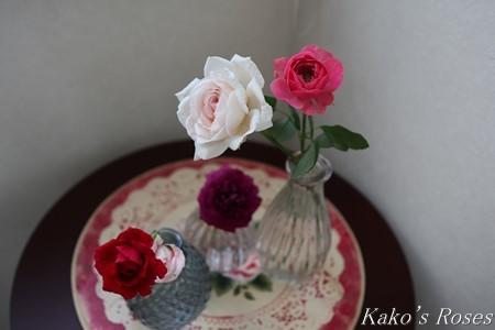s-IMG_4089kako.jpg