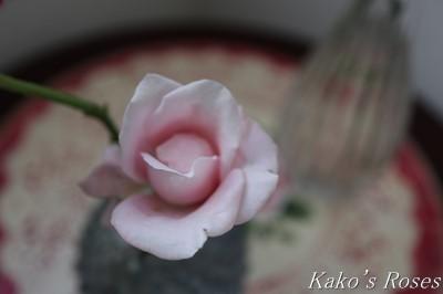 s-IMG_4105kako.jpg