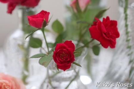 s-IMG_4508.jpg