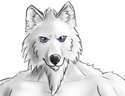 Gペン・マーカーオリ灰色狼獣人包帯付き顔