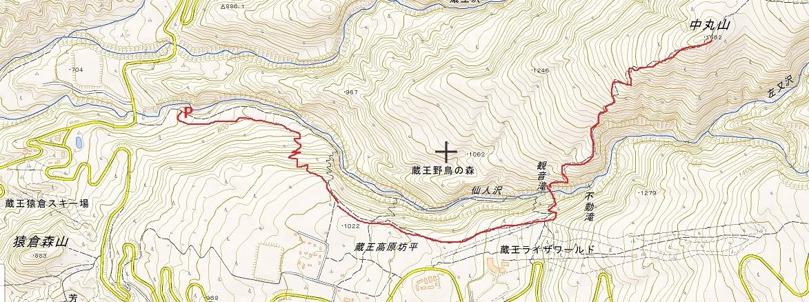 中丸山地図