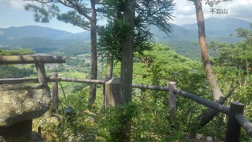 傾城森山頂