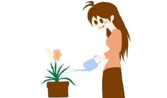 5361-340花と水